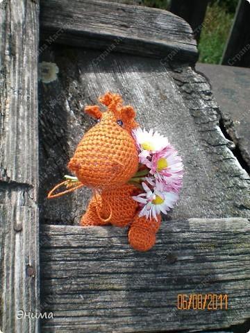 Теперь и у меня живет крошка-дракошка. Создавался на саду, дождливым днём из подручных материалов. Бабуля дала хорошие нитки, крючок и бусины нашла в сумке, описание как вязать было записано в ежедневнике.  фото 15