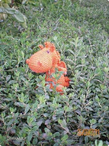 Теперь и у меня живет крошка-дракошка. Создавался на саду, дождливым днём из подручных материалов. Бабуля дала хорошие нитки, крючок и бусины нашла в сумке, описание как вязать было записано в ежедневнике.  фото 8