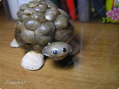 В  самом  начале  своего блога я  уже  выставляла   своих  черепашек  http://stranamasterov.ru/node/85234      Теперь вот созрела  на  МК. Возможно  кому-нибудь  да  пригодится... фото 18