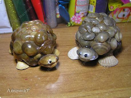 В  самом  начале  своего блога я  уже  выставляла   своих  черепашек  http://stranamasterov.ru/node/85234      Теперь вот созрела  на  МК. Возможно  кому-нибудь  да  пригодится... фото 19