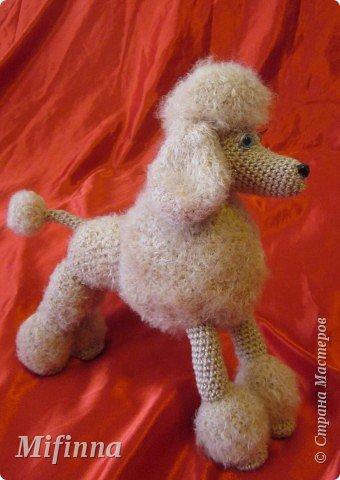 Благодаря Алене Haruko с сайта САТИЛИНА у меня получилась такая собачка-пудель Аня (подарок для подруги).  Не устану говорить ей спасибо!!!!!  фото 2