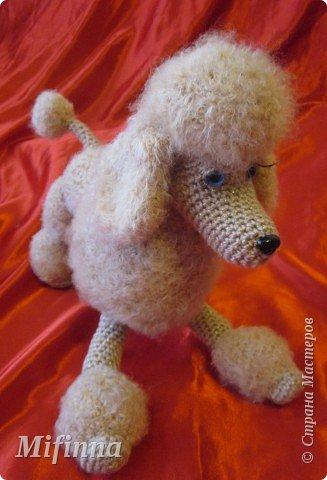 Благодаря Алене Haruko с сайта САТИЛИНА у меня получилась такая собачка-пудель Аня (подарок для подруги).  Не устану говорить ей спасибо!!!!!  фото 4