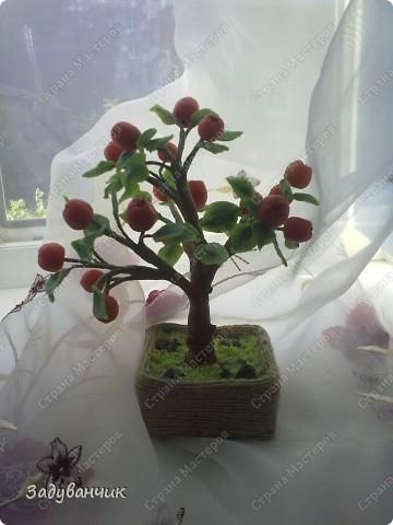 Вот и моё деревце из холодного фарфора. Огромное спасибо Светлане SVET1301 ( http://stranamasterov.ru/user/68349 ) за МК!   фото 2