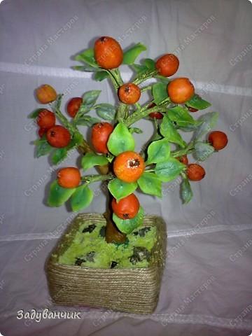 Вот и моё деревце из холодного фарфора. Огромное спасибо Светлане SVET1301 ( http://stranamasterov.ru/user/68349 ) за МК!   фото 3