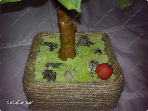 Вот и моё деревце из холодного фарфора. Огромное спасибо Светлане SVET1301 ( http://stranamasterov.ru/user/68349 ) за МК!   фото 6