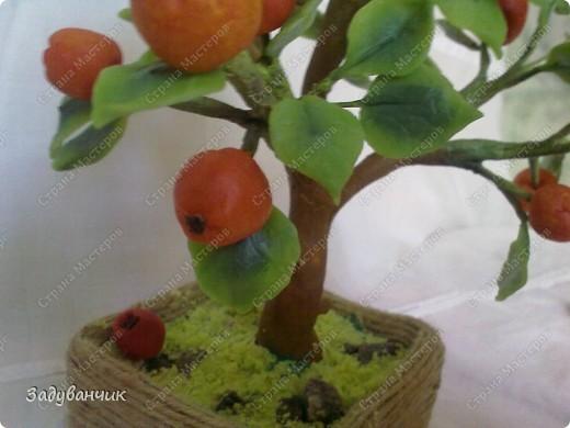 Вот и моё деревце из холодного фарфора. Огромное спасибо Светлане SVET1301 ( http://stranamasterov.ru/user/68349 ) за МК!   фото 7