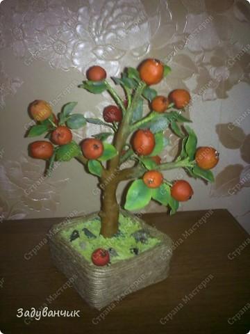 Вот и моё деревце из холодного фарфора. Огромное спасибо Светлане SVET1301 ( http://stranamasterov.ru/user/68349 ) за МК!   фото 8