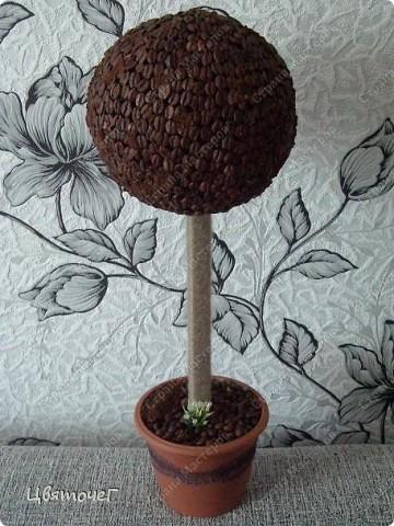 мои первые деревца ) фото 1