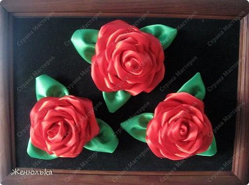 Эти розы  делала в подарок маме на выпускной за то, что она воспитала меня, такую хорошую))))) Когда приклеила, тогда и заметила, что слишком далеко цветочки друг от друга, но было слишком поздно.   фото 1