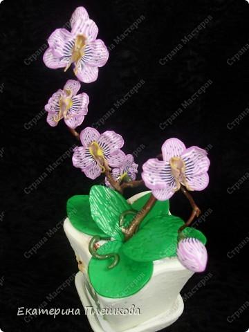 Фаленопсис (Phalaenopsis) из пластики. фото 5