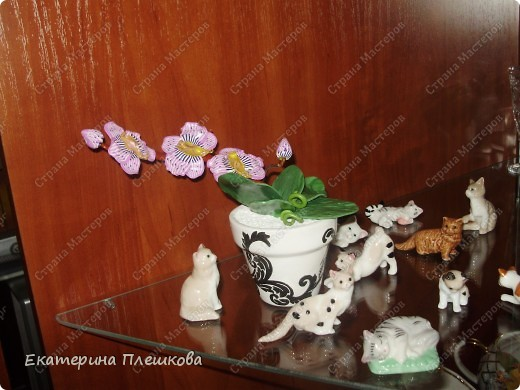 Фаленопсис (Phalaenopsis) из пластики. фото 2