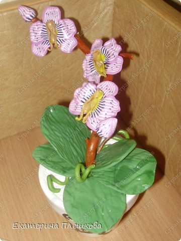Фаленопсис (Phalaenopsis) из пластики.