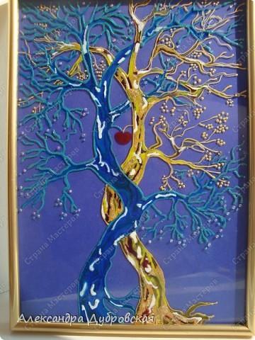 Согласно учениям Фен-шуй, дерево - символ семьи, которое отвечает за процвветание фамилии, за общую гармонию в семье, нормальное развитие семейной жизни фото 4