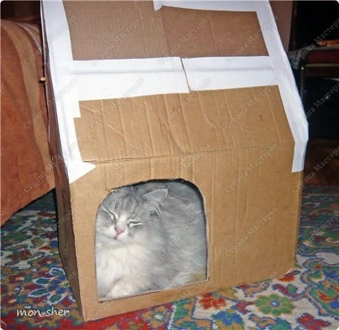 Стала замечать, что наш котик прячется спать в темные места, любит коробки. Пошли с мужем в магазин присмотреть домик, цены там нас сильно покусали))) В связи с чем было решено сделать самой. Главной задачей было, что бы внутри было темно. Вот такой домик мы будем делать! фото 6