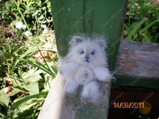 Очередноя поездка на дачу - и снова вязанная игрушка. Котик по имени Цезарь (потому, что похож на одного знакомого Цезаря:))) фото 1