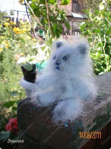 Очередноя поездка на дачу - и снова вязанная игрушка. Котик по имени Цезарь (потому, что похож на одного знакомого Цезаря:))) фото 2