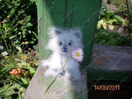 Очередноя поездка на дачу - и снова вязанная игрушка. Котик по имени Цезарь (потому, что похож на одного знакомого Цезаря:))) фото 7