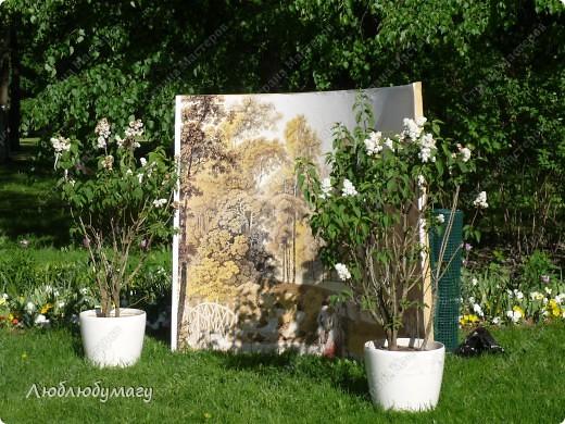 В Санкт- Петербурге в Михайловском саду ежегодно проводится фестиваль ландшафтного искусства. Хочу вам, дорогие мастерицы, показать, что мы там увидели в этом году. фото 14