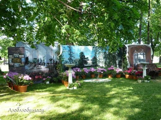 В Санкт- Петербурге в Михайловском саду ежегодно проводится фестиваль ландшафтного искусства. Хочу вам, дорогие мастерицы, показать, что мы там увидели в этом году. фото 8