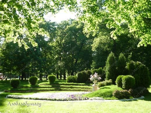 В Санкт- Петербурге в Михайловском саду ежегодно проводится фестиваль ландшафтного искусства. Хочу вам, дорогие мастерицы, показать, что мы там увидели в этом году. фото 18