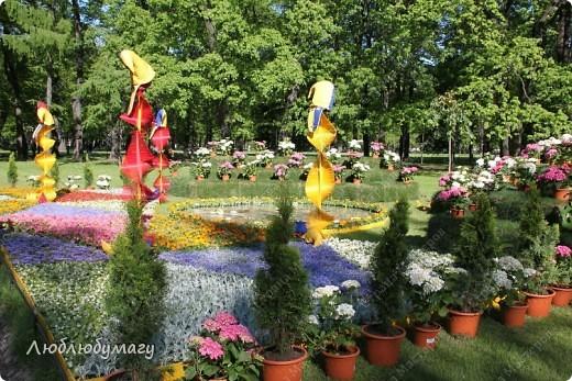 В Санкт- Петербурге в Михайловском саду ежегодно проводится фестиваль ландшафтного искусства. Хочу вам, дорогие мастерицы, показать, что мы там увидели в этом году. фото 5