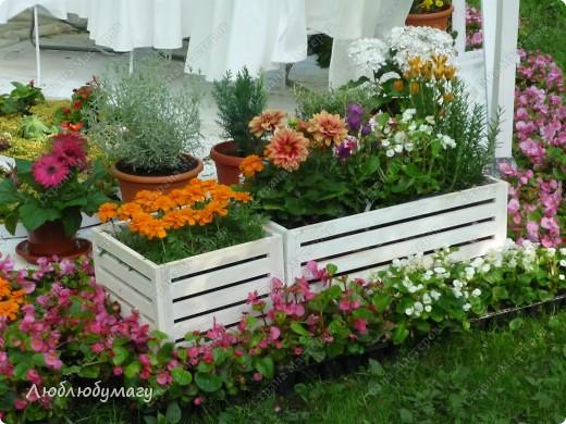 В Санкт- Петербурге в Михайловском саду ежегодно проводится фестиваль ландшафтного искусства. Хочу вам, дорогие мастерицы, показать, что мы там увидели в этом году. фото 31