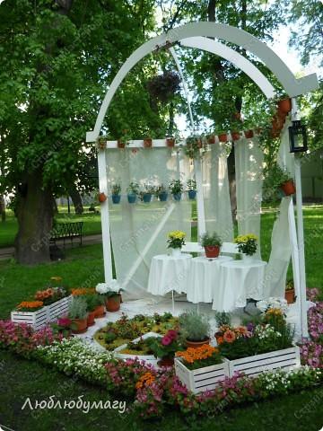 В Санкт- Петербурге в Михайловском саду ежегодно проводится фестиваль ландшафтного искусства. Хочу вам, дорогие мастерицы, показать, что мы там увидели в этом году. фото 29