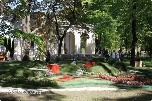 В Санкт- Петербурге в Михайловском саду ежегодно проводится фестиваль ландшафтного искусства. Хочу вам, дорогие мастерицы, показать, что мы там увидели в этом году. фото 32