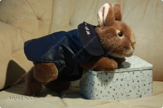 Представляю вашему вниманию осенний плащик-дождевик для собачки!  Моя модель пока что кролик-)) Но размеры все реальные!  фото 1