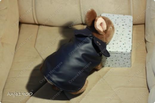 Представляю вашему вниманию осенний плащик-дождевик для собачки!  Моя модель пока что кролик-)) Но размеры все реальные!  фото 2