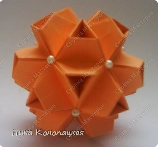 Name: Little Turtle