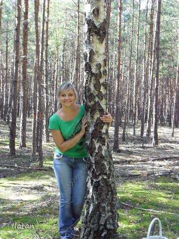 Привет, привет мои хорошие!  Сегодня, если Вы не против...едем в лес....!!!!  Ну Вы .....виртуально...это понятно..., а я как раз вернулась оттуда....и хочу с Вами поделиться красотой нашей Матушки Природы!  То что идем...? Ну то вперед! фото 1