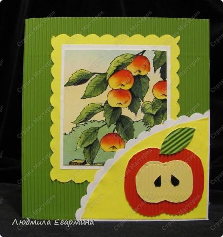 Моя 7-летняя дочка Алёнка, увидев, что я мастерю открытку для игры, тоже заявила, что сделает открытку по скетчу. фото 1