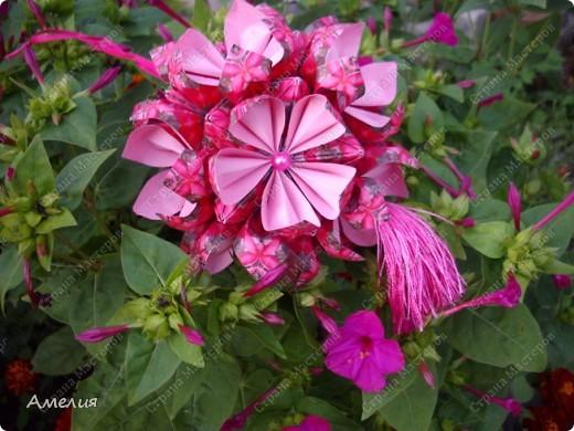 Кусудама Passiflora фото 3