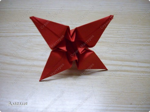 Схему к этим цветам взяла из книги