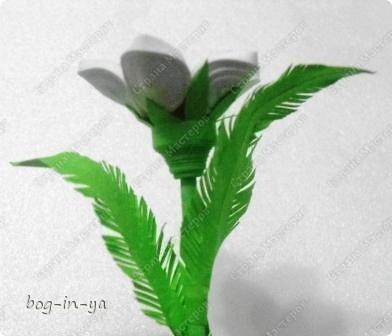 При копировании статьи, целиком или частично, пожалуйста, указывайте ссылку на источник! http://stranamasterov.ru/user/64598 http://stranamasterov.ru/node/234725 Вот такими цветами зацвел сегодня ,отслуживший свой срок, поглотитель запахов из холодильника. Наверное подумал, что весна! фото 13