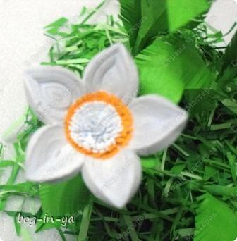 При копировании статьи, целиком или частично, пожалуйста, указывайте ссылку на источник! http://stranamasterov.ru/user/64598 http://stranamasterov.ru/node/234725 Вот такими цветами зацвел сегодня ,отслуживший свой срок, поглотитель запахов из холодильника. Наверное подумал, что весна! фото 1
