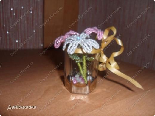 У моих цветочков лепестки гиацинта,листочки розы(правда у розы помойму больше листочков а у гиацинта меньше лепесточков!)!В качестве вазочки я взяла маленький стаканчик украсила золотой ленточкой,и на дно насыпала совсем немножечко бусинок!Ну вобщем Вот!А свои цветочки я назвала брилианиты! фото 1