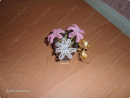 У моих цветочков лепестки гиацинта,листочки розы(правда у розы помойму больше листочков а у гиацинта меньше лепесточков!)!В качестве вазочки я взяла маленький стаканчик украсила золотой ленточкой,и на дно насыпала совсем немножечко бусинок!Ну вобщем Вот!А свои цветочки я назвала брилианиты! фото 2