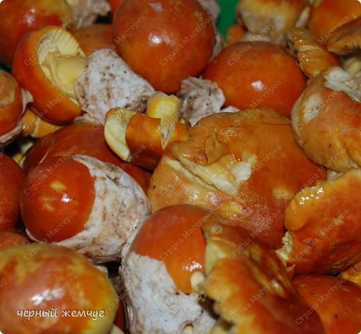Яичный гриб в сметанном соусе фото 1