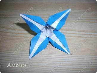"Еще одни цветочки из книги  Livro de Origami Основа кусудама ""Электра"" автор Девид Митчел http://diagramascia.blogspot.com/search/label/Electra http://www.youtube.com/watch?v=_C0TMbyP_No http://kusuda.ru/kusudamas/kusudama-elektra/ фото 15"