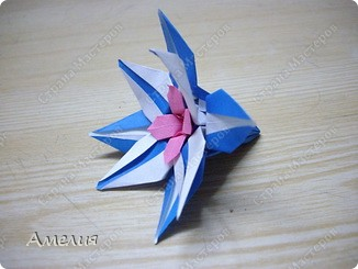 "Еще одни цветочки из книги  Livro de Origami Основа кусудама ""Электра"" автор Девид Митчел http://diagramascia.blogspot.com/search/label/Electra http://www.youtube.com/watch?v=_C0TMbyP_No http://kusuda.ru/kusudamas/kusudama-elektra/ фото 26"