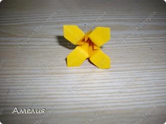 "Еще одни цветочки из книги  Livro de Origami Основа кусудама ""Электра"" автор Девид Митчел http://diagramascia.blogspot.com/search/label/Electra http://www.youtube.com/watch?v=_C0TMbyP_No http://kusuda.ru/kusudamas/kusudama-elektra/ фото 31"