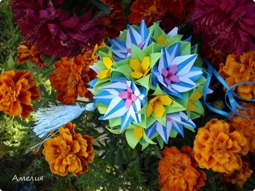 "Еще одни цветочки из книги  Livro de Origami Основа кусудама ""Электра"" автор Девид Митчел http://diagramascia.blogspot.com/search/label/Electra http://www.youtube.com/watch?v=_C0TMbyP_No http://kusuda.ru/kusudamas/kusudama-elektra/ фото 2"