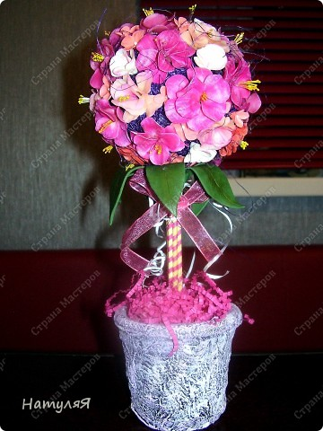 пыталась слепить цветы сакуры (не смогла, пустила все на топиарий)