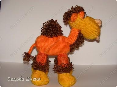 Верблюжонок Жоржик фото 30