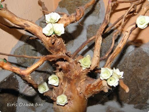 Так как  в посте основное показать и рассазать о цветочках, которые получаются   из веток  разных деревьев при помощи точилки,дрели или шуруповерта, то фото-это просто как наглядное пособие... Или просто идеи использования... фото 2