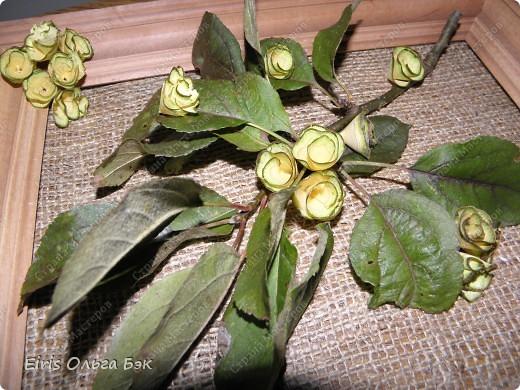 Так как  в посте основное показать и рассазать о цветочках, которые получаются   из веток  разных деревьев при помощи точилки,дрели или шуруповерта, то фото-это просто как наглядное пособие... Или просто идеи использования... фото 9