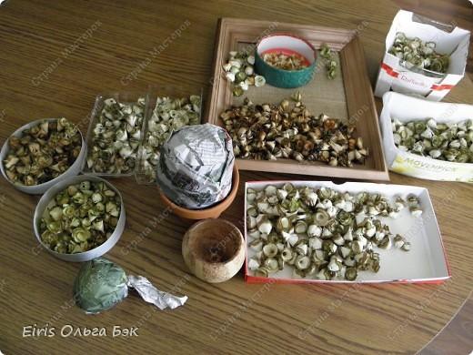 """Теперь хочется написать- НАШИ  любимые """"деревянные розочки"""".Использовала веточки ивы, рябины, яблони, березы, клена, липы.  фото 3"""