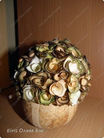 """Теперь хочется написать- НАШИ  любимые """"деревянные розочки"""".Использовала веточки ивы, рябины, яблони, березы, клена, липы.  фото 8"""
